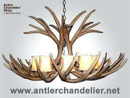 reion antler chandelier reion single tier mule deer chandelier 1 reion elk antler chandelier