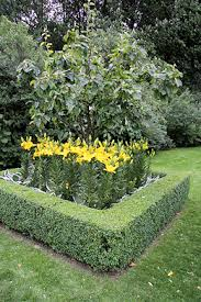 Underplanting Fruit Trees With Meadow Flowers  Garden Design Underplanting Fruit Trees