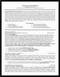 Resume Template Examples Sales Senior Executive Car With 87
