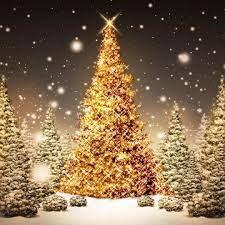 Christmas lights background ...