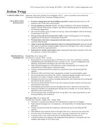 Example Of Manager Resume Customer Service Manager Resume New Grocery Store Manager Resume 40