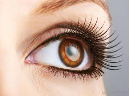 brown eyes may be a characteristic of someone who s black irish black irish people are