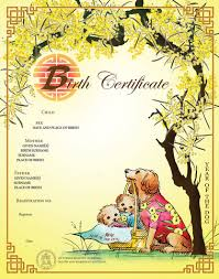 dog birth certificates chinese zodiac commemorative birth certificate births deaths and