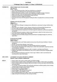 sales team leader cover letter cover letter sales manager free sample cover letter resume help