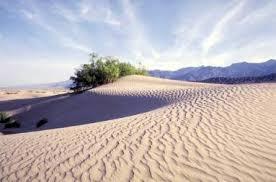 Учебно методическая разработка к уроку Окружающий мир по теме  Что вы знаете о пустынях