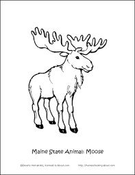 Small Picture Maine Fun Facts Printables Maine State Animal Coloring Page