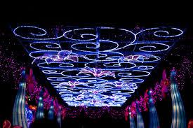 Snug Harbor Light Festival Nyc Winter Lighting Festival Will Be Open Until Jan 6
