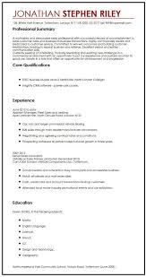example of a written cv application cv sample for a summer job myperfectcv