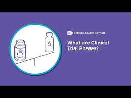 Phase 3 Clinical Trial Flow Chart Step 3 Clinical Research Fda