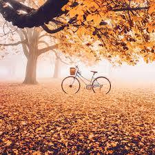 Kết quả hình ảnh cho mùa thu
