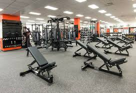 cleveland browns hammer strength benches and racks
