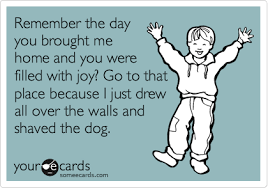 Toddler Quotes Fascinating Funny Toddler Quotes Funny Kids Quotes Childcare Is Fun