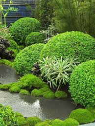 Small Picture 40 best Landscape Design images on Pinterest Landscape design