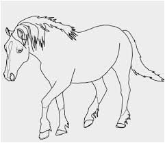 Shetland Pony Coloring Pages Inspirational Two Ponies Grazing