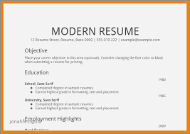 Resume Examples For A Caregiver Elegant Visual Resume Template