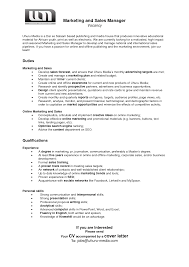 Channel Sales Rep Resume Great Sales And Marketing Resume Sims 3