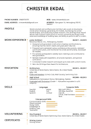 Team Skills Resume Resume Examples By Real People Junior Architect Resume