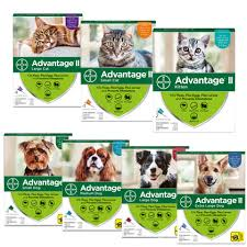 Advantage Ii Dogs Cats Low Price At 1 800 Petmeds 1800petmeds