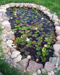 Small Picture 35 Impressive Backyard Ponds and Water Gardens