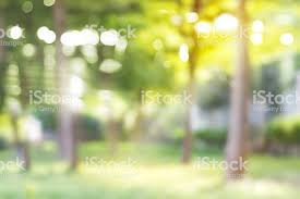blurred outdoor backgrounds. Wonderful Outdoor Blurred Park Vibrant Green Natural Background In Outdoor Backgrounds A