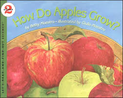 Image result for how do apples grow