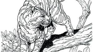 Cat Coloring Pages Hard Big Cats Wild Realistic Together With