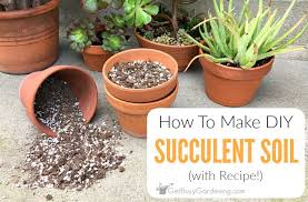 how to make a succulent garden. Interesting Succulent How To Make Your Own Succulent Soil With Recipe For A Garden