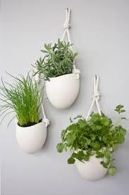 Висячие сады в интерьере | Висячие растения, Держатели для ...