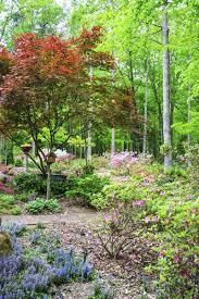 tips on gardening in zone 7 garden