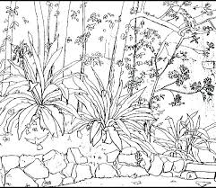 Coloring Pages Nature Scenes Coloring Pages Of Nature Free Nature