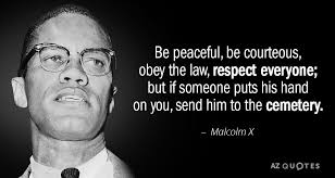 Malcolm X Quotes Unique Malcolm X Quote Be Peaceful Be Courteous Obey The Law Respect