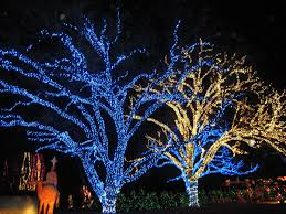 Blora Nature In Lights 2017 7 Merriest Things To Do Around Fort Hood For Christmas