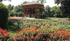 Ботанический сад Академии наук Таджикистана Боги Ирам  Фотографии