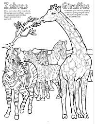 zoo s really big coloring book on letter z coloring pages page image clipart images or