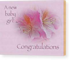 Congratulations New Baby Girl Azaleas Wood Print By Mother Nature