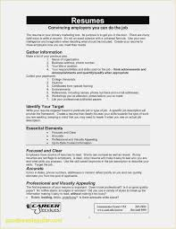 Download 56 Word Cv Template Professional Professional Template
