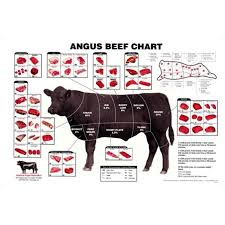 Cow Meat Cut Chart 27x40 Angus Beef Chart Meat Cuts Diagram Poster