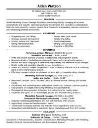 Account Representative Sample Resume 12 Manager Job Seeking Tips