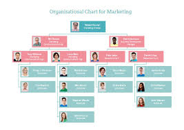 Draw Organization Chart For Your Business