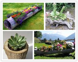Small Picture Making a Log Planter for Flowers Garden planters Planters and Logs