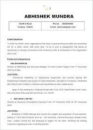 Resume Executive Summaries Executive Summary Layout Financialstatementform