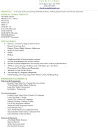 Commercial Artist Resume Sample How To Write Template Free Cv Mmdadco