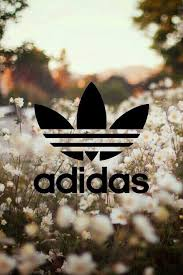 lit laptop wallpapers. tbh, adidas clothes are better than lit laptop wallpapers