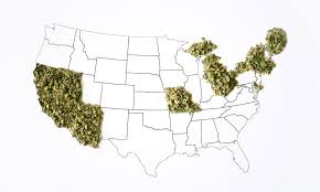 what states have