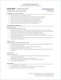 Internal Resume Template Simple Internal Resume Template Cover Letter Auditor Sample R For Internal