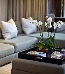 Decorative Tv Tray Tables Tv Tray Coffee Table Writehookstudio 76