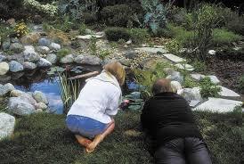 Small Picture sharing Michigan Gardener