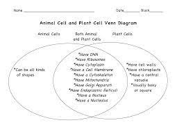 Organelles In Plant And Animal Cells Venn Diagram Plant Vs Animal Cells Venn Diagram Google Search Animal