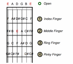 Guitar Notes Chart How To Find Guitar String Notes On A Guitar