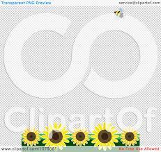 Kitchen Borders Kitchen Wallpaper Borders Sunflowers Best Kitchen Ideas 2017